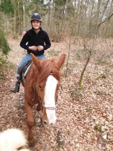 forest-sisko-belgique (2)